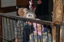 Állatok farsangja a Pusztai Állatparkban