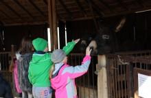 Önkéntesek a Pusztai Állatparkban
